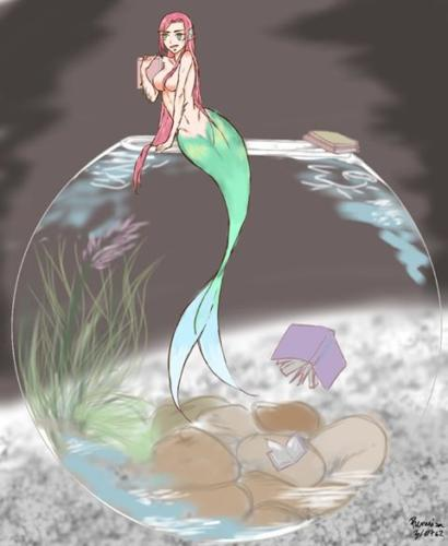 324 little mermaid